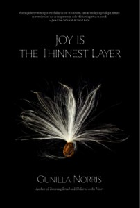 joy-is-the-thinnest-layer_mock_final_sm-202x300